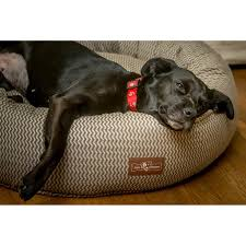 jax and bones donut bed mod ash premium cotton petswag