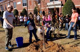 South Carolina's Arbor Day Is In December, Not April ... Little Trees Coupon Perfume Coupons City Of Kamloops Tree Now Available Cfjc Today Housabels Com Code Untuckit Save Money With Cbd You Me Codes Here Premium Amark Coupons And Promo Codes Noissue Coupon Updated October 2019 Get 50 Off Mega Tree Nursery Review Online Local Evergreen Orchard Lyft To Offer Discounted Rides On St Patricks Day Table Our Arbor Foundation Planting Adventure Tamara 15 Canada Merch Royal Cadian South Carolinas Is In December Not April 30 Httpsoriginscouk August