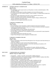 100 Project Coordinator Resume IT Samples Velvet Jobs