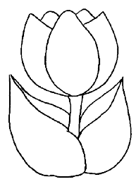 Full Size Of Coloring Pagefancy Tulip Page Pages Printable Surprising