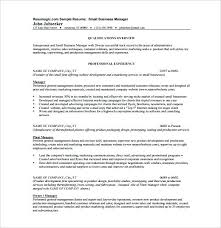 Sample Resume Business Small Owner Analyst Banking Domain