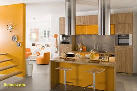 couleur armoire cuisine ophrey decoration cuisine couleur orange prélèvement d échantillons