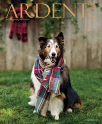 Spirit Halloween Sacramento Arden by Ardent For Life Holiday 2016 By Ardent For Life Issuu