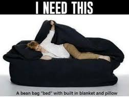 Memes And Bean I NEED THIS A Bag Bed With Built In Blanket Pillow