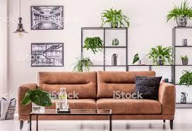 braune ledercouch mitten im eleganten wohnzimmer mit großstadtdschungelkonzept stockfoto und mehr bilder archivmaterial