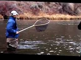rio streamer tip sink tip fly line catch bigger trout using a