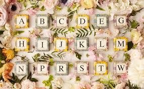 Gianna Rose Letter N Monogram Bar Soap