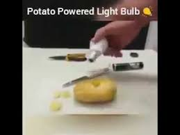 potato bulb science experiment 2017 potato light bulb