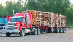 Western Star Custom Loaded With Logs | Logging | Pinterest ... Close Up Logging Truck Working In The Spruce Forest Collecting Page 4 Forestech And Roadbuilding Equipment Specialist James Jones Timber Transport Vehicle Logging Trucking Factory Price Mercedes Log Trailer For Sale China Service Trucksrigs Rig Planet Western Star 6900xd Trucks Super Heavy Duty Truck Applications 1992 Peterbilt 378 For Sale Rickreall Or Cc Used Mercedesbenz Arocs3263timmerbil8x4 Trucks Year 4900 Fa Heavyhauling Fileb Double Australiajpg Wikimedia Commons Home