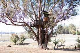 Pumpkin Patch Petaluma Adobe by 7 Of The Absolutely Coolest Airbnbs In The Bay Area Upout