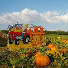 Pumpkin Patch Prince Frederick Md by Westminster Md Baugher U0027s Farm Has Been A Working Fruit And
