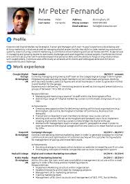 Resume Examples By Real People: Google Team Leader Resume ... 70 Welldesigned Resume Examples For Your Inspiration Samples Templates Orfalea Student Services To Help You Stand Out From The Crowd Graphic Design Sample Writing Guide Rg By Real People Data Scientist Google Team Leader Resume For 2019 Job Application