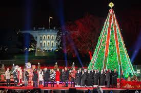 Puna Lights A Beloved Holiday Tradition