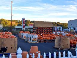 Pumpkin Patch Stamford Ct by Where To Find The Perfect Pumpkin For Halloween Newstimes