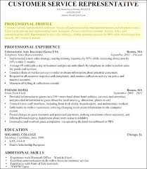 Resume Profile Examples For College Students In A Personal