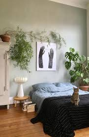 the plants that will actually thrive in your bedroom