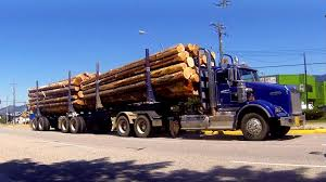 B.C. Logging Trucks #04 -- Kenworth W900, Western Star 4900 ... Sisu Archives Alucar China Tri Axle Wood Timber Trailer Log Loader Photos Nova Truck Nation Centresnova Centres New Powerlift 74 Wallboard Boom Vertical Reach On 2016 2019 New Freightliner 122sd Dump At Premier Glt 6 Dog In Wa Graham Lusty Trailers Used Logging 6x4 W Prentice 120c For Sale Craigslist 2012 Mack Reckart Equipment Brokers 1995 Intertional