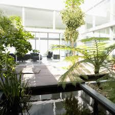 plante chambre plantes dépolluantes tous leurs secrets et leurs bienfaits