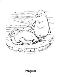 Coloring Pages Animals And Their Homes Dibujos De Casas Para