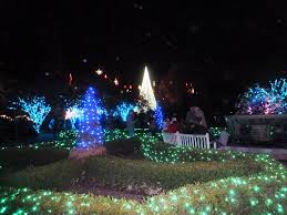 Types Of Christmas Tree Lights by Unique Lighting Systems Prices U2014 Home Landscapings The Different