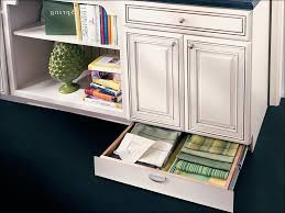 Narrow Depth Floor Cabinet by Kitchen Lowes Corner Cabinet Prefabricated Kitchen Cabinets Base