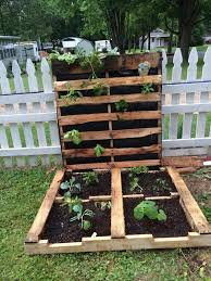 This Pallet Garden Has A 2 For 1 Option With It Starts As Horizontal Above Ground Bed That You Simply Fill Dirt And Then Plant In