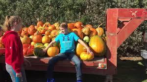 Marana Pumpkin Patch Farm Festival by Class In The Pumpkin Patch Youtube
