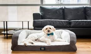 Top Rated Orthopedic Dog Beds by Best Dog Beds For Small Dogs Overstock Com