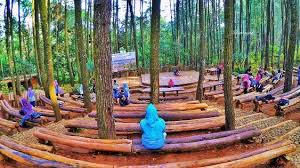 Kawasan Hutan Pinus Mangunan