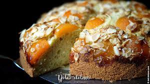 einfacher aprikosen mandel kuchen