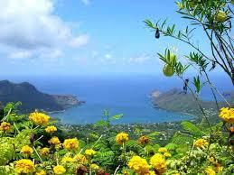 photos des iles marquises sur les hauteurs des îles marquises geo fr