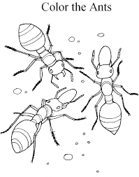 Fire Ant Coloring Page