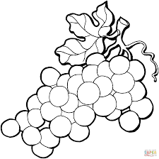 Grapes Coloring Page Grape 4 Free Printable Pages Online