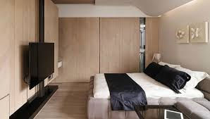 View In Gallery Small Space Apartment With Bedroom Living Room