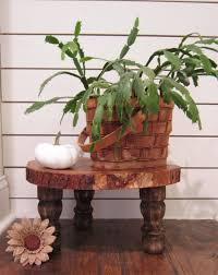 The Honeycomb Home Has This Raw Rustic Plant Stand Featured On Their Blog Including A Tutorial Think About For Your Covered Porch Or Foyer