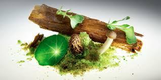 haute cuisine haute cuisine gastronomy course for superyacht chefs in barcelona