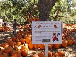 Pumpkin Patch Arlington Tx 2015 by Dallas Arboretum And Botanical Gardens Dallas Having Fun In The