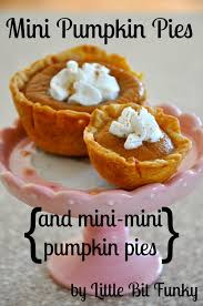 Ingredients For Pumpkin Pie Spice by Little Bit Funky What I Made For Monday Mini Pumpkin Pies And