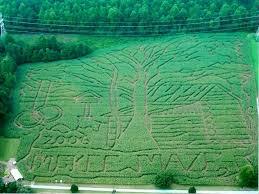 Corn Maze Pumpkin Patch Winston Salem Nc by 67 Best Orange County Nc Farms Images On Pinterest Farms