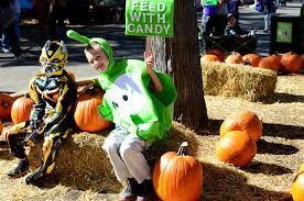 Pumpkin Patches In Colorado Springs 2014 by These Are The Top Five Denver Neighborhoods To Trick Or Treat In
