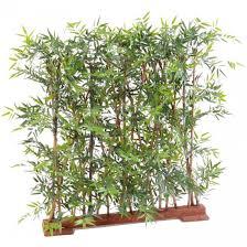 entretien des bambous en pot exceptional bambou en pot entretien 6 haie artificielle bambou