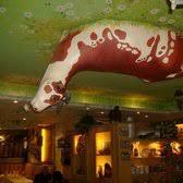 la vache au plafond limoges la vache au plafond 42 photos 72 avis français 7 avenue