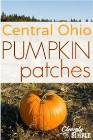 Best Pumpkin Patches In Cincinnati by 32 Best Roar And Explore Adventure Getaway Images On Pinterest