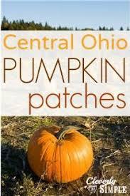 Pumpkin Patch Toledo Ohio by 241 Best Ohio Images On Pinterest Ohio State Buckeyes Ohio