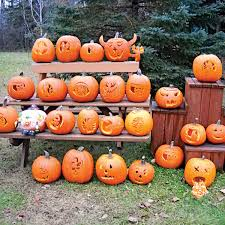 Fertilizer Requirements For Pumpkins by Creative Ideas For What To Do With Your Pumpkin This Fall Family