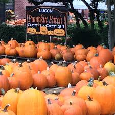 Johnson Farms Pumpkin Patch by The Pumpkin Patch Returns To Long Island U2013 Better Together