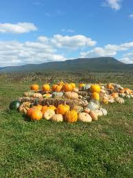 Pumpkin Patch Chesapeake Va by 17 Best Mt Jackson Virginia Images On Pinterest Virginia Apple