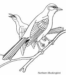 Northern Mockingbird Coloring Page