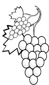 A Stalk Of Grapes Coloring Page