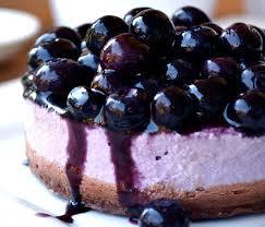 blueberry cheesecake20x359